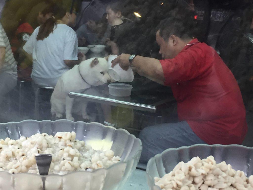 他拒絕幫柴柴裝冰水只買一份冰 女店員「一回頭看」就被融化了!