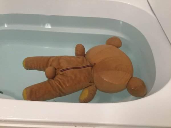 33張「洗布偶的畫面就跟命案現場沒兩樣」的超爆笑照片!看到第2張時我已經在叫警察了...