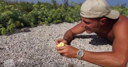 他拿著吃了一半的蘋果躺在地上我還覺得很古怪,但才幾秒「黑色小精靈」開始出現我才知道蘋果的真正魔力!