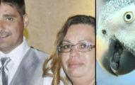 這名男性跟妻子中槍倒臥屋內時警方以為是自殺,但「鸚鵡的一句話」才揭開毛骨悚然的真相!