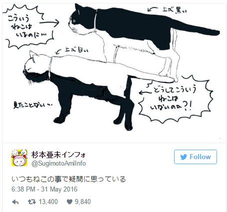 她好奇「為何黑白貓沒有上白下黑」? 引出神人破解大自然的奧秘!