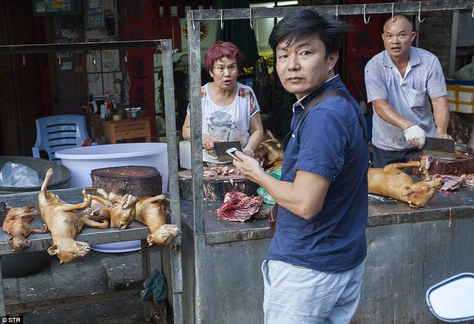 動保人士群起前往玉林現場拯救出1000隻貓狗,但看到的「超乎想像血腥料理畫面」證明地獄其實就在中國!
