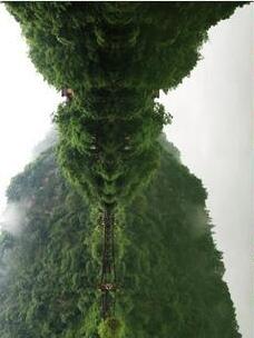 這名大學生在峨嵋山拍照時不小心拍到了「齊天大聖孫悟空」,讓母子兩人都驚呆了!你看到了嗎?