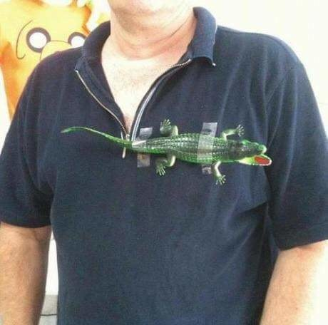 Lacoste is just too damn expensive.