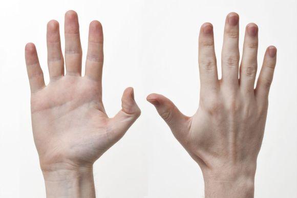 還沒有看對方「左手無名指長度」前不要交往!這樣就能神準看出對方和自己隱藏的戀愛性格!