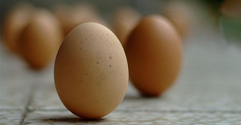 端午節了可是還不會立蛋嗎?當畫面開始往下拍的時候看到真正的「立蛋」後你就再也回不去了!