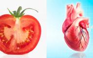 科學家在研究食物形狀與架構時同時比對了人類的器官,接著就發現了超越科學的驚人發現!
