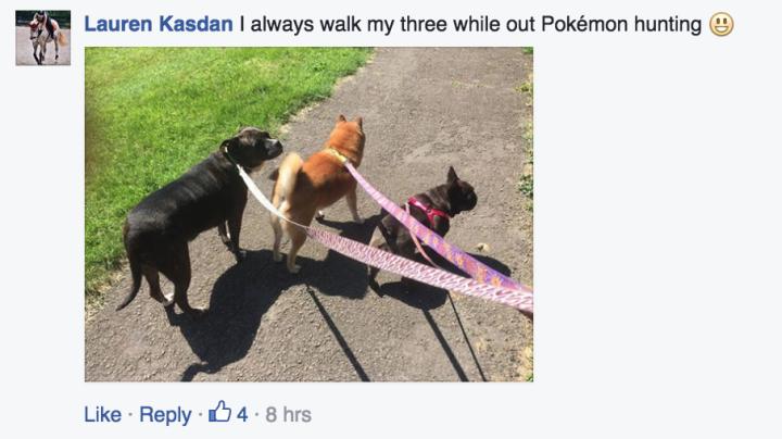 動物收容所發公告「請Pokemon GO玩家玩的時候順便幫忙遛狗」全世界超感動,但很多狗狗都被拍到已經累到癱了...