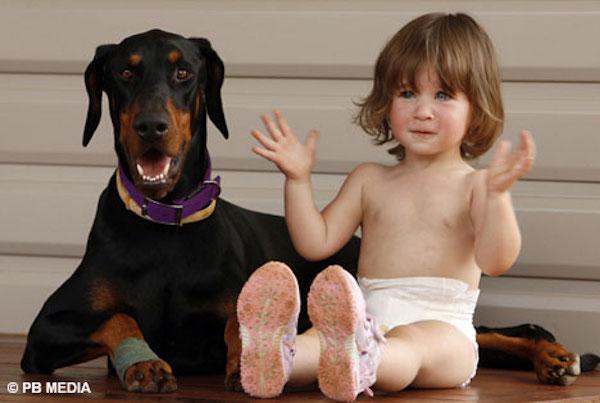 杜賓犬突然推倒女孩拖行媽媽快嚇瘋,原來是在救小寶寶啊!
