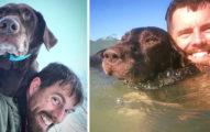 他放棄工作帶著「只剩6個月能活的癌末狗狗」一起踏上生命最後旅行,現在14個月過去他發現事情有點不對勁...
