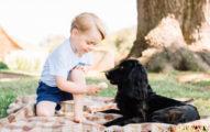英國劍橋小王子喬治過3歲生日時,竟然因為這張照片被罵爆還被動物保育協會嚴重警告!