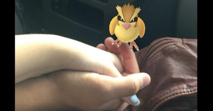 29段已死在「Pokemon Go」手下的愛情,#11就是你立刻卸載的最好恐怖理由!