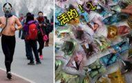 15個中國人覺得超正常但外國人看到已經嚇爆了的「中國超恐怖社會現象」。