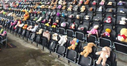 運動館一夕之間「被1萬500隻泰迪熊」佔領大家都看傻眼,「為了她最好朋友」會讓你的眼睛模糊...