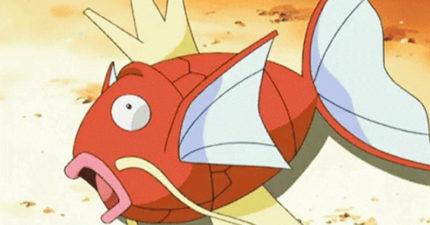 為何鯉魚王被稱為「史上最廢寶可夢」?連當壽司都不行 小霞「淡定一句話」說明一切
