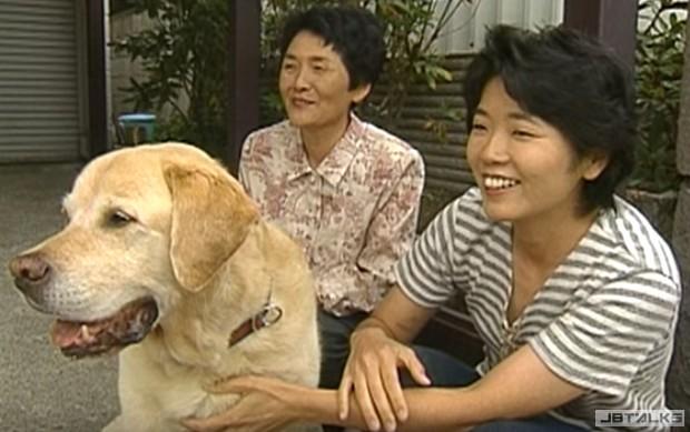 退休導盲犬和主人已經分開11年,重逢時瞬間把整個網路都弄哭...