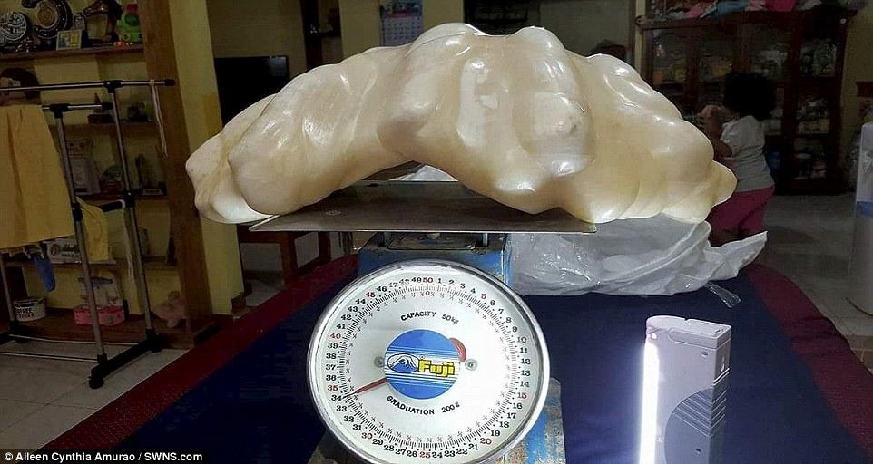 菲律賓漁夫10年前找到「34公斤破紀錄巨無霸珍珠」,最近發現價值32億覺得自己太笨了!
