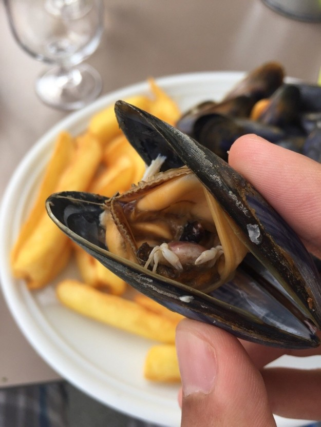 This mussel that has a tiny crab in it.