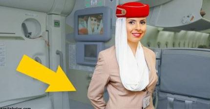 這就是為什麼「登機時空服員都會把雙手背在後面」!不是因為禮貌喲!