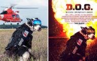 他把36張網友傳來的普通照片PS成「好萊塢電影海報神作」,看到#2電影公司不挖角都不行了!