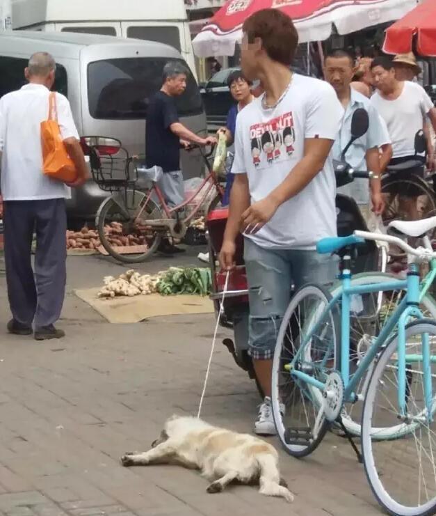 渣男因為想吃狗肉就當街上用磚頭砸死別人家的狗狗,結果暴怒的民眾就決定讓他完美體驗狗狗的感覺...