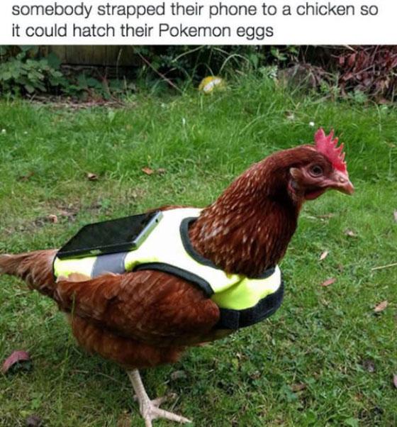 網友分享自創的「Pokemon GO」孵蛋最快捷徑,三個人一起孵那一招實在太強了啦!