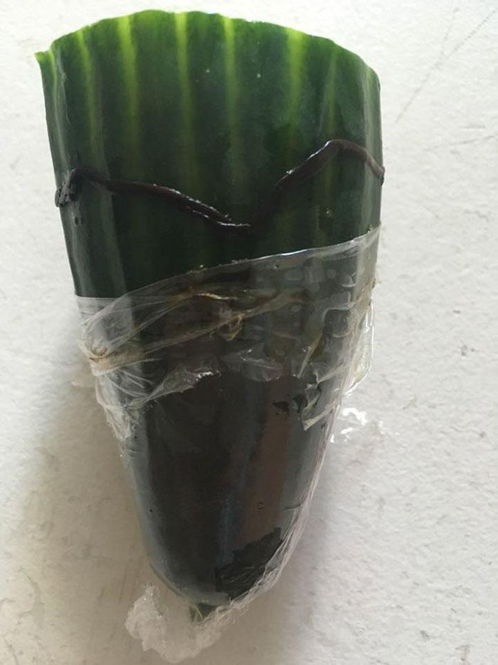 客訴黃瓜有蟲 超市「神爆笑回覆」讓他成為永久客戶了!