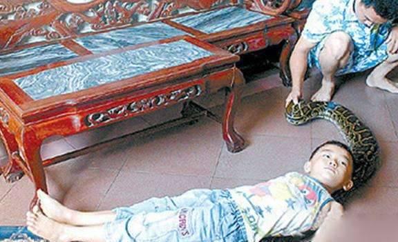 他9年前把小蛇救回家養成大蟒蛇「現在感情好到會纏在一起睡覺」,有天兒子遇難牠更是用尾巴救了他!