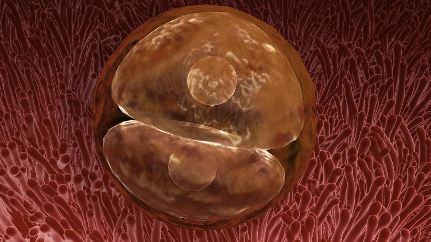 最新醫學證實:以後「生小孩」不需要女生了!男生自己來就可以!