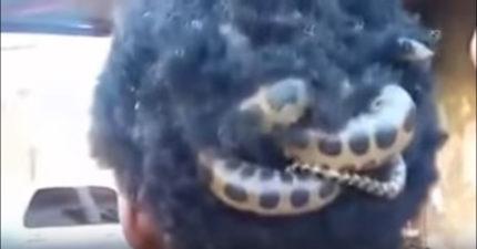 真實世界的美杜莎!「最狂髮飾」蛇頭從頭髮跑出來時超詭異!
