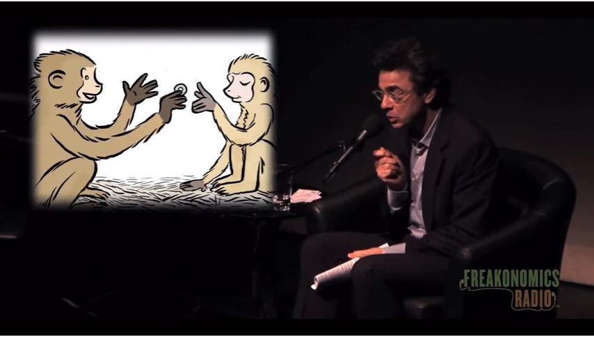 經濟學家想實驗「教猴子使用錢會發生什麼事」,結果猴子就開始賣淫了...