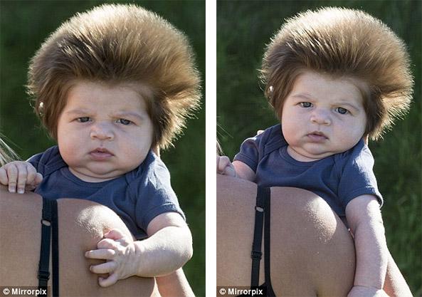 寶寶才9週大就長出「超茂密獅子鬃毛」 幫他戴上帽子後的反應超爆笑!