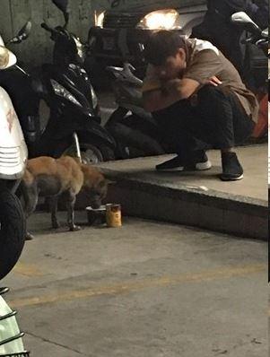 超商店員看到門口有流浪狗就拿罐罐餵他吃,最後一張「慢慢吃我陪你」暖心畫面讓網友直呼「愛都流出來了」!