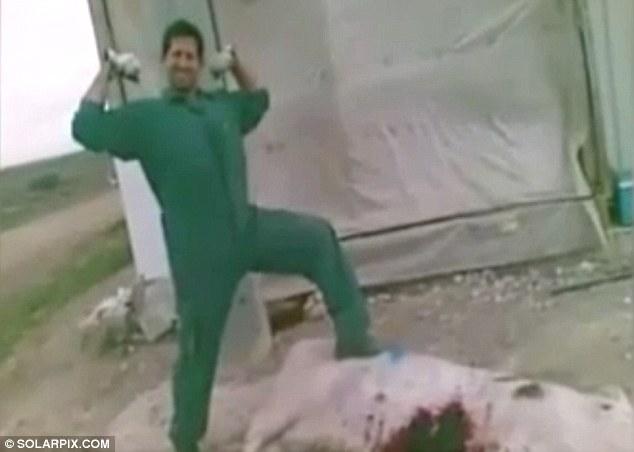 他偷偷錄下同事對豬媽媽做的慘忍虐殺提告,不但拿鐵棒打、刀砍、「還活生生從肚子挖出豬寶寶」...
