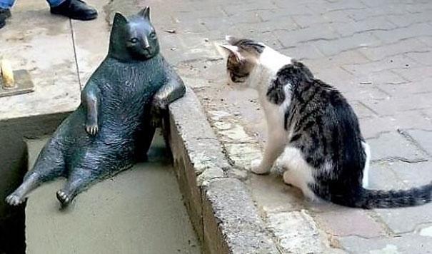 紅遍全球網路「淡定肥貓大叔」不幸過世,設立「等比大小超逼真銅像」紀念他連其他貓咪都來拜碼頭!