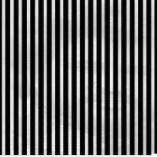 13張「一定要猛搖手機」玩能看到的隱藏亮點圖片。
