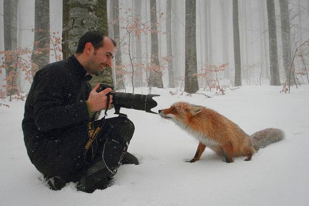 30幾張證明「世界可能沒有我們想像這麼精采」的美麗照片背後攝影真相。