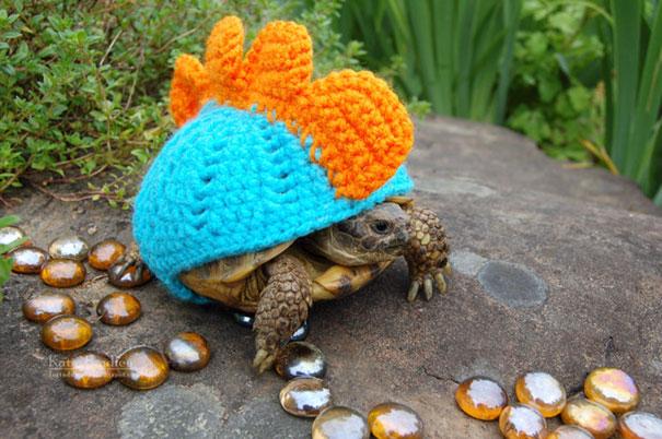 35張「不重要但會讓你一整天美好」的爆萌小動物「穿小衣服」照片!