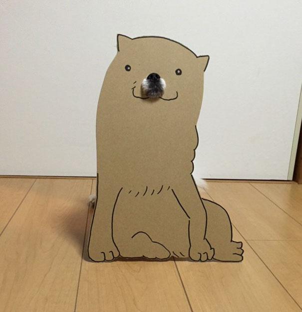 日本女生用紙板把自己狗狗變成最爆笑的紙板人物!獅子那張絕對會讓你噴笑!(38張)