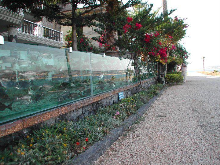 富豪花66萬做出50公尺「海圍牆」 經過他家保證讓你美到停止呼吸!