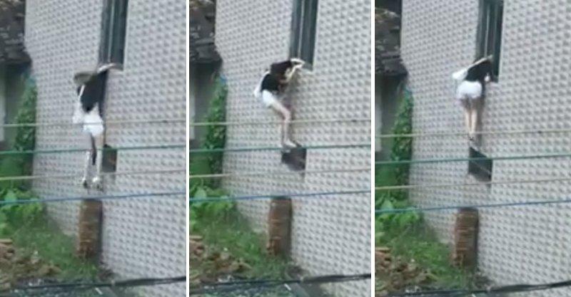 這名正妹試著爬到二樓,手臂突然沒力掉下「小妹妹被摧毀」!