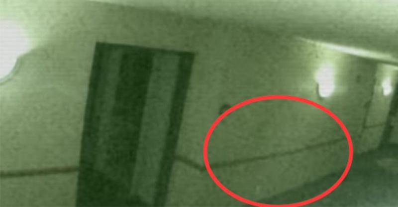 轟動美國的靈異影片:客人抱怨隔壁空房傳出「恐怖吼叫聲」,大膽的員工開門進去後直接被嚇傻...
