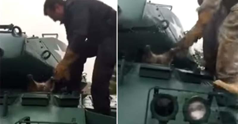 好奇心過強的浣熊太胖卡在坦克車上,救出後「就變忍者了」。