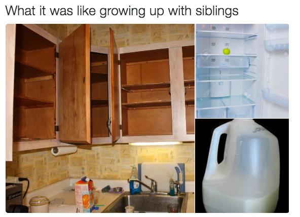 22張只有「從小被兄弟姊妹荼毒長大」的人才會笑到哭的中肯趣圖。媽媽叫你們「抱一下和好」時...