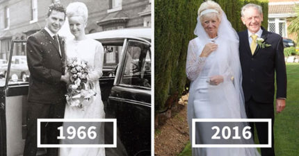 老夫妻穿上「當年的結婚禮服」來慶祝他們50年結婚紀念,賓客都被閃到傻了!