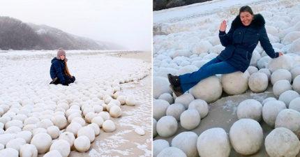 海灘上出現「一大片全自然超巨型雪球」奇景,氣象學者表示:「今年美國要遭殃了!」