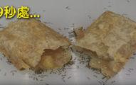 他拍下螞蟻把一整個麥當勞蘋果派「慢慢整個吃爆」的影片,最後畫面超驚奇!