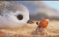 皮克斯推出最新「沒台詞6分鐘小段片」,小鳥戰勝大海浪就是你今天最需要的動力!