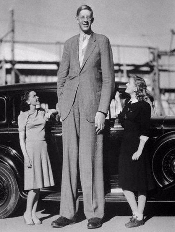 溫柔的巨人「10歲就長到195公分」從此沒有停止長高,至今無人打破他的身高紀錄!