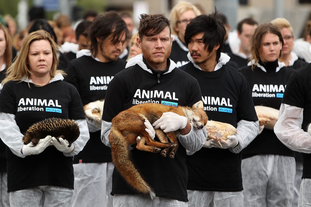 62417UNILAD imageoptim GettyImages 182567271 Vegans And Vegetarians Actually Help Kill Animals, Heres How